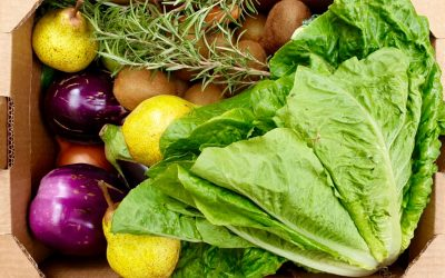 Più biologico e meno pesticidi: ecco gli obiettivi europei (da confermare)